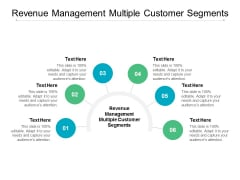 Revenue Management Multiple Customer Segments Ppt PowerPoint Presentation Ideas Guide Cpb