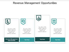Revenue Management Opportunities Ppt PowerPoint Presentation Styles Shapes Cpb