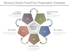 Revenue Model Powerpoint Presentation Examples