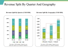 Revenue Split By Quarter And Geography Ppt PowerPoint Presentation Ideas Designs