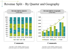 Revenue Split By Quarter And Geography Ppt PowerPoint Presentation Slides Picture