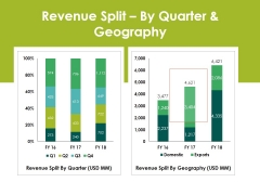 Revenue Splitby Quarter And Geography Ppt PowerPoint Presentation Layout