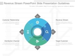 Revenue Stream Powerpoint Slide Presentation Guidelines