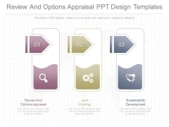Review And Options Appraisal Ppt Design Templates