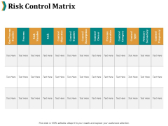 Risk Control Matrix Ppt PowerPoint Presentation Summary Guidelines