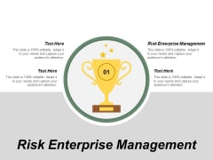 Risk Enterprise Management Ppt PowerPoint Presentation Gallery Visuals Cpb