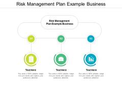 Risk Management Plan Example Business Ppt PowerPoint Presentation Portfolio Elements Cpb