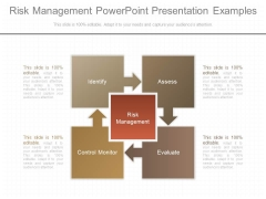 Risk Management Powerpoint Presentation Examples
