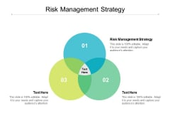 Risk Management Strategy Ppt PowerPoint Presentation Inspiration Sample Cpb