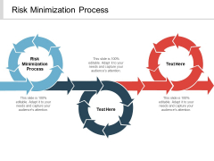 Risk Minimization Process Ppt PowerPoint Presentation Outline Background Designs Cpb