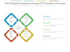 Risk Mitigation Business Strategy Ppt Samples Download