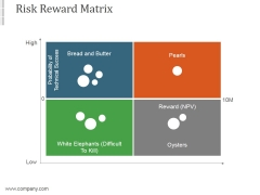 Risk Reward Matrix Template Ppt PowerPoint Presentation Styles