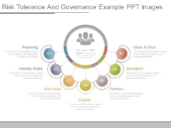 Risk Tolerance And Governance Example Ppt Images
