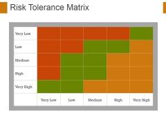 Risk Tolerance Matrix Ppt PowerPoint Presentation Visual Aids Files