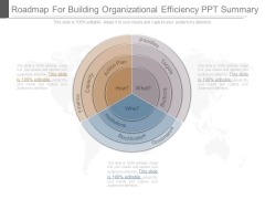 Roadmap For Building Organizational Efficiency Ppt Summary