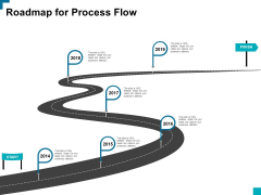 Roadmap For Process Flow Ppt PowerPoint Presentation Icon Elements