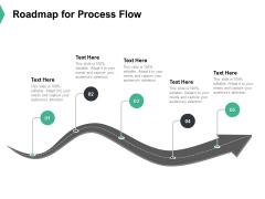 Roadmap For Process Flow Ppt PowerPoint Presentation Outline Layouts