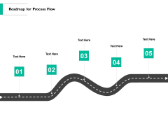Roadmap For Process Flow Ppt PowerPoint Presentation Show Examples