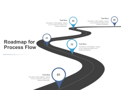 Roadmap For Process Flow Timeline Ppt PowerPoint Presentation Layouts Sample