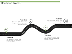 Roadmap Process Ppt PowerPoint Presentation Professional Graphics Design