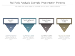 Roi Ratio Analysis Example Presentation Pictures