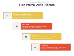Role Internal Audit Function Ppt PowerPoint Presentation Show Portrait Cpb