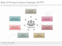 Role Of Product Owner Example Of Ppt