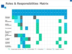 Roles And Responsibilities Matrix Ppt PowerPoint Presentation Gallery Show