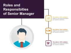 Roles And Responsibilities Of Senior Manager Ppt PowerPoint Presentation Slides Images PDF
