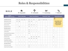 Roles And Responsibilities Ppt PowerPoint Presentation Layouts Example Topics