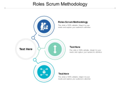 Roles Scrum Methodology Ppt PowerPoint Presentation Pictures Visuals Cpb
