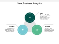 Saas Business Analytics Ppt PowerPoint Presentation Portfolio Maker Cpb