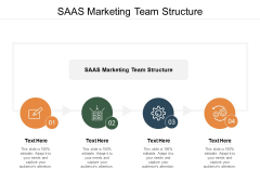 Saas Marketing Team Structure Ppt PowerPoint Presentation File Demonstration Cpb