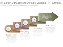 Safety Management Systems Example Ppt Samples