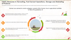 Safety Measures In Harvesting Post Harvest Operations Storage And Marketing Of Produce Ppt Infographics Graphics Design PDF