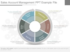 Sales Account Management Ppt Example File