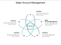 Sales Account Management Ppt PowerPoint Presentation Professional Show Cpb