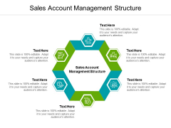 Sales Account Management Structure Ppt PowerPoint Presentation Icon Layout Cpb Pdf