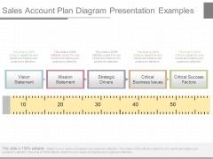 Sales Account Plan Diagram Presentation Examples