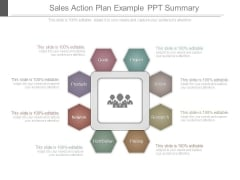 Sales Action Plan Example Ppt Summary