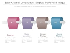 Sales Channel Development Template Powerpoint Images