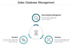 Sales Database Management Ppt PowerPoint Presentation Outline Templates Cpb