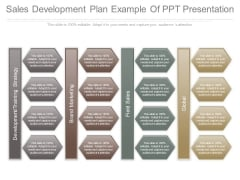 Sales Development Plan Example Of Ppt Presentation