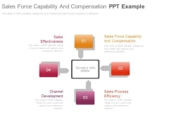 Sales Force Capability And Compensation Ppt Example