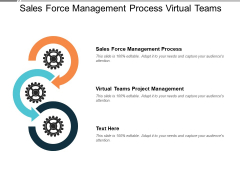 Sales Force Management Process Virtual Teams Project Management Ppt PowerPoint Presentation Show Objects