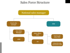 Sales Force Structure Ppt PowerPoint Presentation Icon Templates