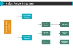 Sales Force Structure Ppt PowerPoint Presentation Show