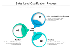 Sales Lead Qualification Process Ppt PowerPoint Presentation Professional Files Cpb Pdf