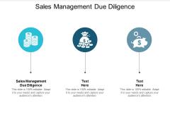 Sales Management Due Diligence Ppt PowerPoint Presentation Slides Samples Cpb