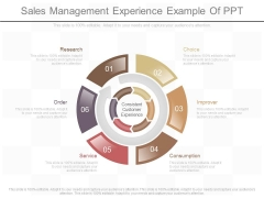 Sales Management Experience Example Of Ppt